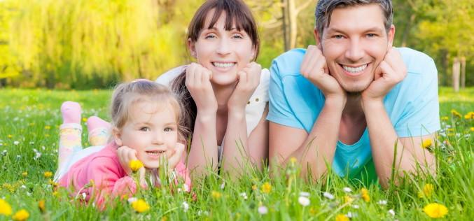 Как бесплатно получить земельный участок молодой семье, инструкция и нюансы