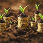 Как оценить стоимость земельного участка: варианты и стоимость процедуры