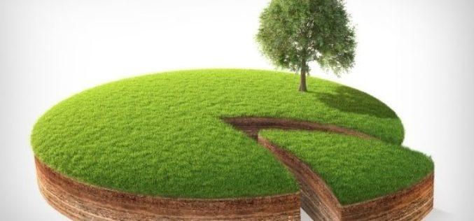 Что такое общая долевая собственность на землю и как происходит ее раздел?
