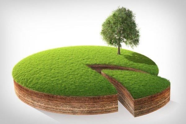 Долевая собственность на землю